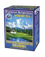 BRAHMI - geheugen en hersenactiviteit